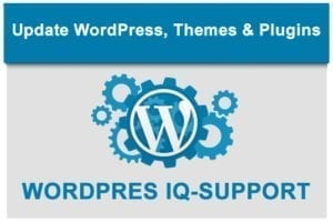 WordPress IQ Support